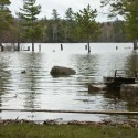 Flooding at Moffott Beach Campground on Sacandaga Lake