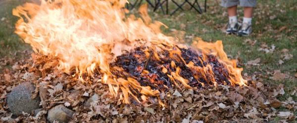 NY State Ban On Residential Brush Burning
